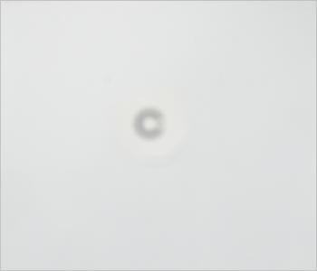 視力0.1の見え方イメージ