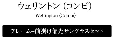 ウェリントン(コンビ)